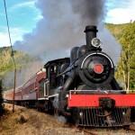 tren-el-valdiviano-2014-150x150