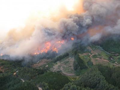 Incendio-Forestal-noticias-radio-chicureo