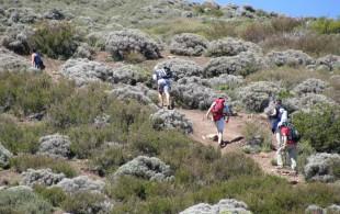 parque-cordillera-ñilhue-panoramas-chicureo-radio-tiempo-tendencia