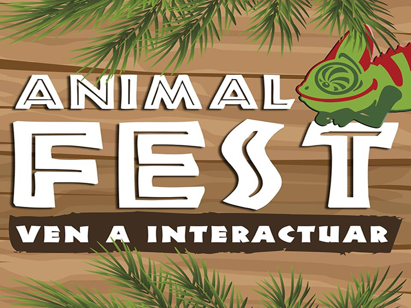 animal-fest-radio-chicureo